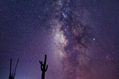 Desert Milky Way